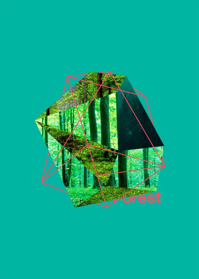 sy160801_1.jpg